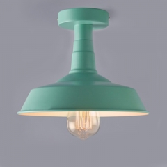 Graceful Green Finished Close to Ceiling Light