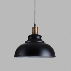 Industrial Style Dome Shade 1 Light Pendant in Black