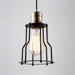 Single Light Pendant  with Wire Guard
