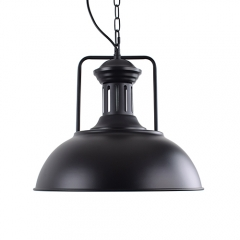 Dome Shaped 16 1/2'' Wide Single Light Pendant in BLack