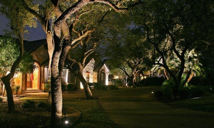 Solar Spotlight A Environmental Landscape Lighting In The