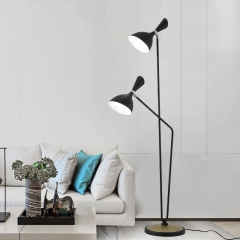 Modern Style 2 Light Duke Floor Lamp in Black