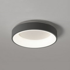 Modern Style 1 Light LED Circle Flush Mount Ceiling Light for Living Room/Dining Room/Bedroom Room